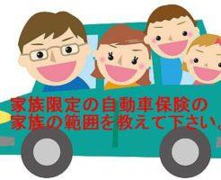 家族限定自動車保険
